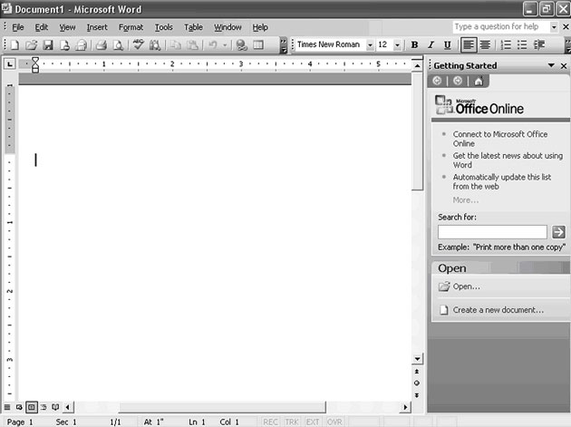 MS Word 2003 Main Page