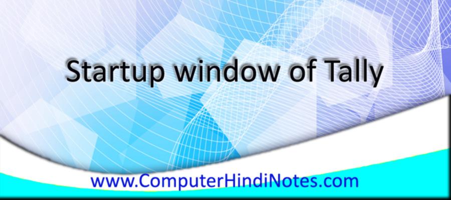 Startup-window-of-Tally