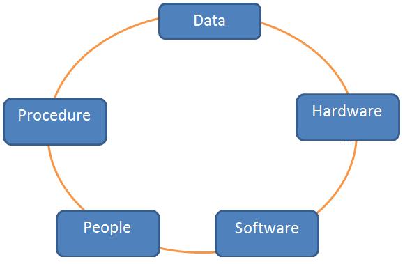 components-of-information-sytsem